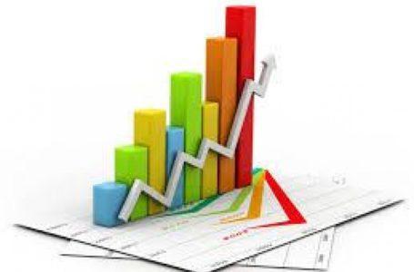 Ягодные тенденции и цены на рынке: аналитика от FreshBot