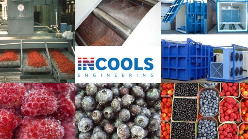 РГС для ягід Зберігання ягідної продукції в охолодженому стані – це найнадійніший і найефективніший спосіб «консервації»