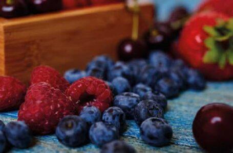 Надто рання весна може вплинути на якість та об'єми врожаю ягід в Україні, – експерт